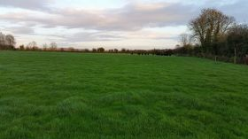 C.17 Acres Non Residential Holding at Ballinabointra, Midleton, Co. Cork.